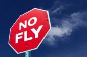 ШПЛС: «Свои  пилоты хотят заграницу, а чужих хотят набрать.  Жаль, что так...»