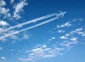 Предложение ШПЛС по оптимизации досмотра в аэропорту