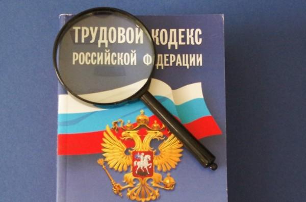 Замечания ШПЛС к проекту постановления Правительства РФ «Об особенностях регулирования трудовых отношений в 2020 году»